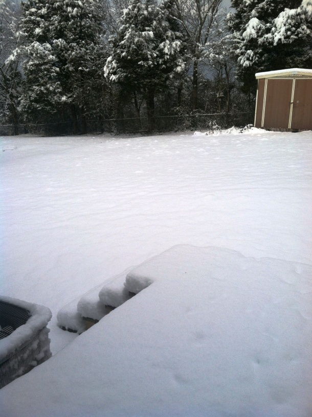 I took this so you could see the accumulation...look at the porch steps!