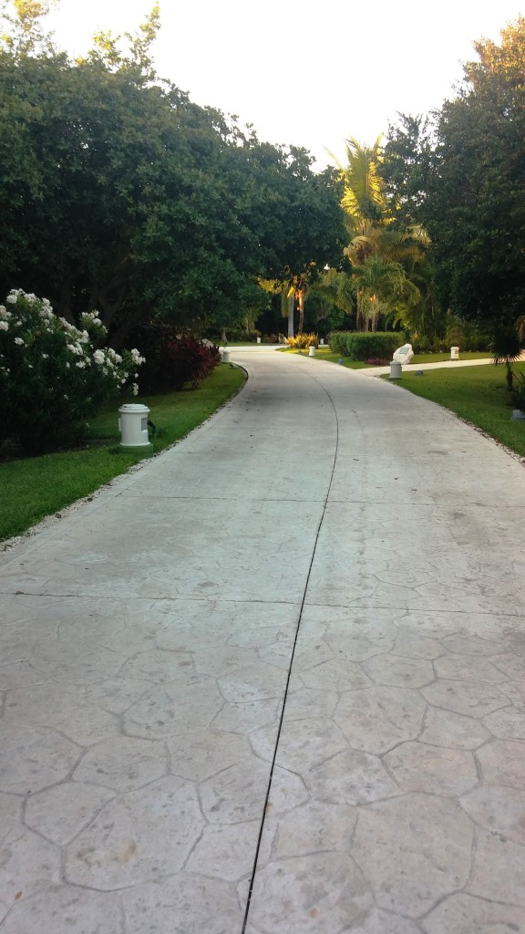 A shot of the walkway leading away from our building