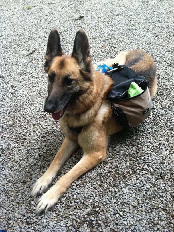 Luka's Backpack