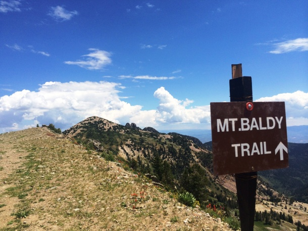 Mt Baldy Sign