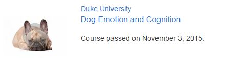 Dog Emotion and Cognition - Coursera