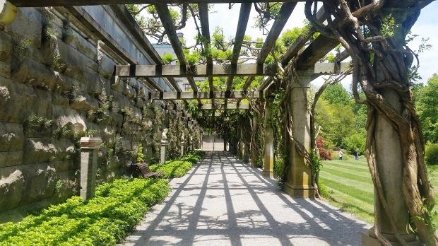 Biltmore Walkway