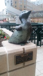 This is Millie, who's right next door to Gertie.